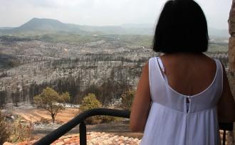 Vés a: Turistes evacuats: «En pocs minuts teníem les flames al costat»