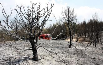Bon temps per acabar de controlar l'incendi del Bages i l'Anoia