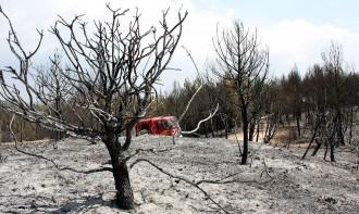 Vés a: Unes 90 dotacions dels Bombers remullen l'incendi d'Òdena per evitar revifades