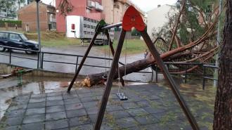 Un temporal amb vent i pedra tomba arbres i torres elèctriques a Gironella