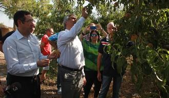 Jordi Ciuraneta reclama a Agroseguro celeritat en els peritatges als camps afectats per la pedregada al Segrià