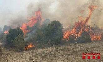 Estabilitzat l'incendi de Seròs, al Segrià, que ha cremat unes cinc hectàrees