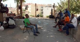 Vés a: Els temporers tornen a la plaça del Seminari de Lleida