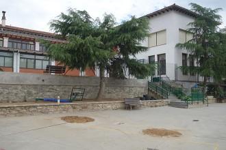 Es talaran els pins del parc Sant Jordi de Sant Pere de Torelló