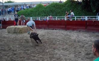 Ascó estudia eliminar els actes taurins que va recuperar per festes el 2013