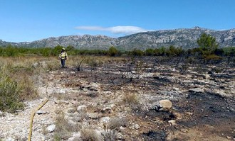 Crema un important incendi forestal al terme municipal de l'Ametlla de Mar