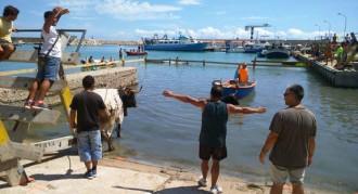 Alcanar planta barreres a l'aigua per mantindre els bous a la mar de les Cases