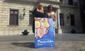 La Festa Major de Misericòrdia 2015 ja té cartell i programa d'actes