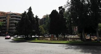 Cau un arbre patrimonial a la plaça Imperial Tàrraco