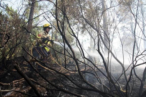 Extingit l'incendi de vegetació a Quart