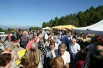 Vés a: Centenars de visitants omplen una lluïda XII Fira de la Torregassa