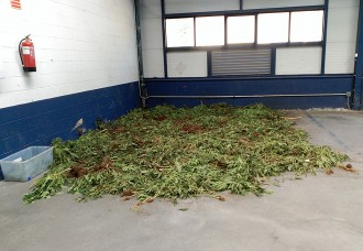 La comissaria dels Mossos d'Olot fa una «olor insuportable» a marihuana