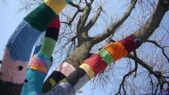 Meandre guarnirà amb llanes de colors els arbres del Parc de l'Agulla