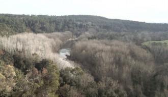 Vés a: Demanen l'anul·lació d'una rompuda forestal a Parets d'Empordà