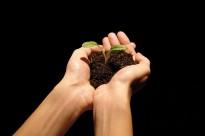 Vés a: La UVic-UCC presenta la nova càtedra d'Agroecologia i Sistemes Alimentaris