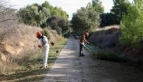 El Consell de la Terra Alta contracta 11 persones per treballar a la Via Verda i a sis  municipis
