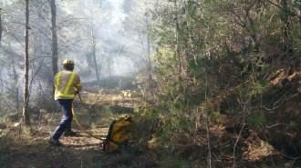 Els Bombers donen per estabilitzat l'incendi a Alcover, a l'Alt Camp