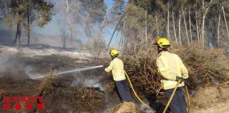 Un incendi crema part d'un bosc de pi blanc a Gimenells