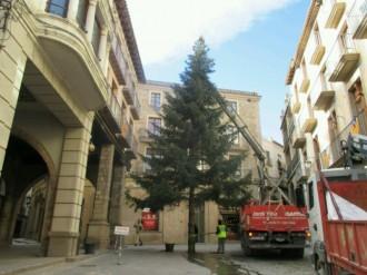L'arbre de Nadal ja llueix a la Plaça Major