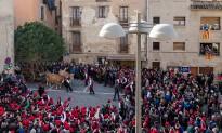 Tres-cents galejadors fan ressonar els trabucs a la Festa del Pi de Centelles