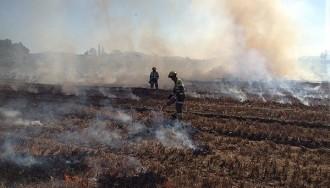 Vés a: Agricultura crema el camp de l'Empordà on va aparèixer cargol poma per acabar d'eradicar-lo
