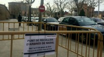 Vés a: L'Ajuntament de Palau implanta un nou pla per la poda de l'arbrat
