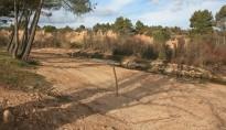 Vés a: GEPEC-EdC alerta que mantenir els bous a l'illa de Vinallop «és il·legal»