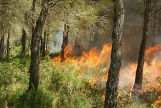 Cremes prescrites: una eina important en la prevenció d'incendis