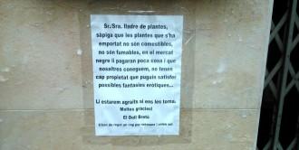 Un avís tenyit d'ironia per als lladres de plantes de Terrassa