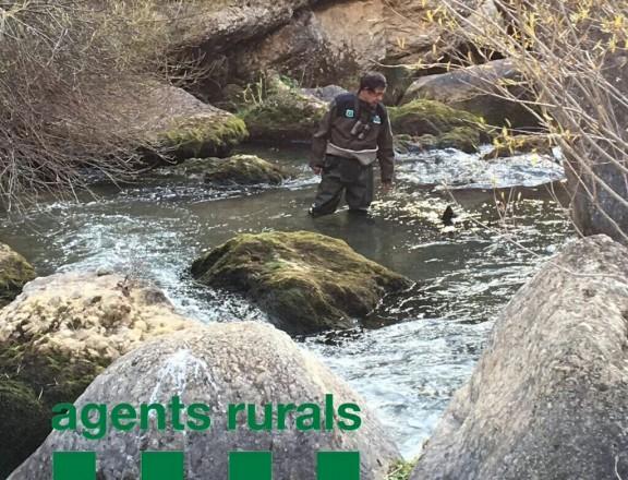 Detecten la presència de llúdries en aigües del Solsonès