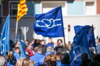 Vés a: Els ecologistes demanen ajuda als europarlamentaris per alliberar Junqueras i Romeva