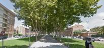 Els veïns del Mas Vilanova insisteixen a podar l'avinguda dels Castellers