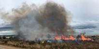 Crema una hectàrea de matoll en un descampat del Nou Vendrell