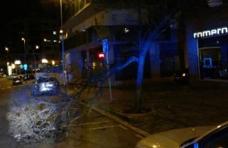 El vent fa caure arbres, parteix faroles i afecta la façana de l'estació dels FGC