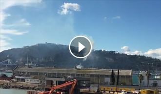 Vés a: Controlat l'incendi que cremava a la falda de la muntanya de Montjuïc