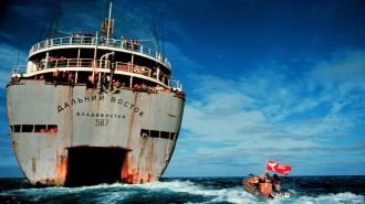 Vés a: Greenpeace, una revolució psicodèlica