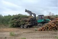 Vés a: Breda instal·larà una caldera de biomassa a dos centres escolars