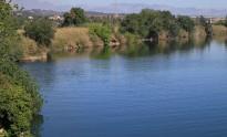 Vés a: L'Ebre, el segon riu més contaminat de l'Estat pels plaguicides tòxics