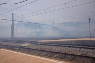 Un incendi crema una zona de vegetació a Llançà, a l'Alt Empordà