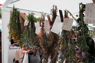 Vés a: Argençola celebra el sisè mercat de les espècies