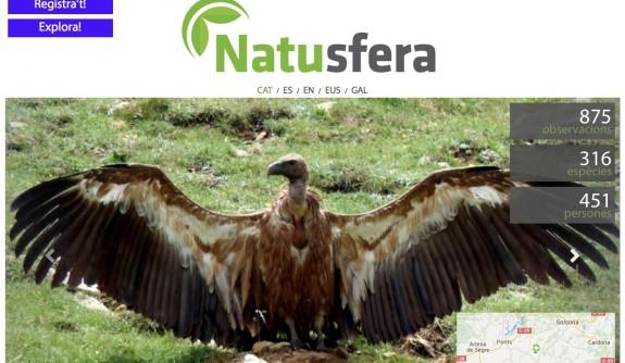 Vés a: Neix Natusfera per connectar els amants de la natura de tot Europa