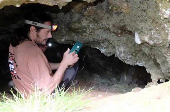 Observació de ratpenats a coves de l'alt Solsonès