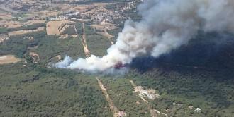 Vés a: Declarat un incendi a Blanes