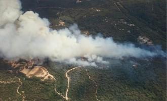 Vés a: L'incendi entre Blanes i Lloret de Mar ja ha afectat 30 hectàrees