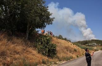 Vés a: Estabilitzat l'incendi a Blanes després de cremar més de 20 hectàrees