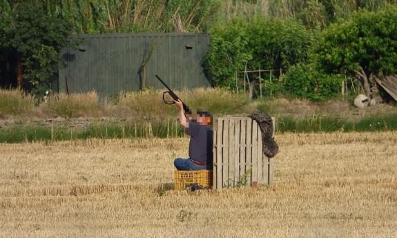 Vés a: DEPANA denuncia les conseqüències de la caça al delta del Llobregat