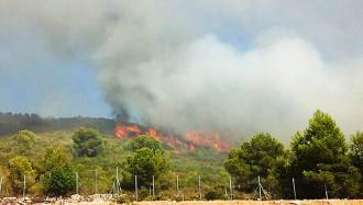 Vés a: Controlat l'incendi de Calafell després de cremar 9,6 hectàrees