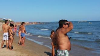 Vés a: Prohibeixen el bany durant dues hores en una platja de Cubelles per la presència d'una tintorera