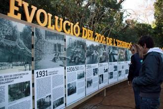 Vés a: El futur del zoo de Barcelona: sense animals exòtics i amb realitat virtual
