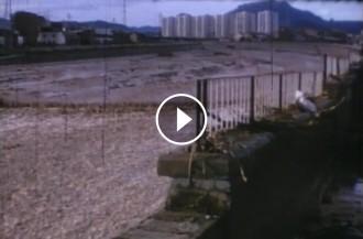 Vés a: VÍDEO EXCLUSIU Imatges inèdites de la rierada del 1971 a Terrassa